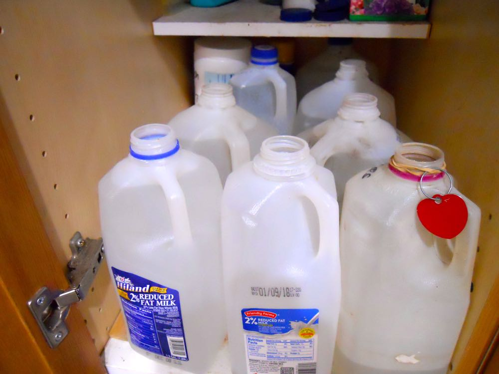 Use old milk bottles to hold tap water for a day or two so added chemicals can dissipate.