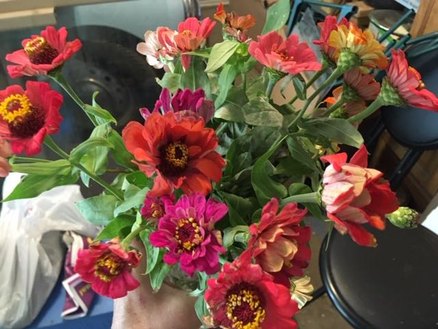 One of my last zinnia bouquets for this growing season. (Photo by Charlotte Ekker Wiggins)