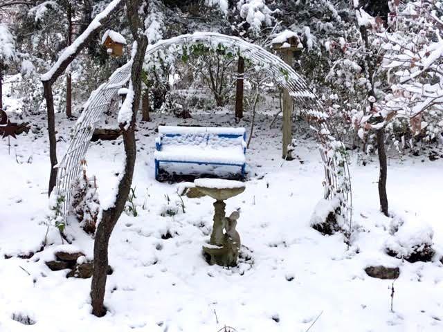 BG winter front arbor.jpg