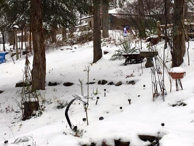 """My snow-covered garden ready to """"tell"""" on its visitors. (Photo by Charlotte Ekker Wiggins)"""