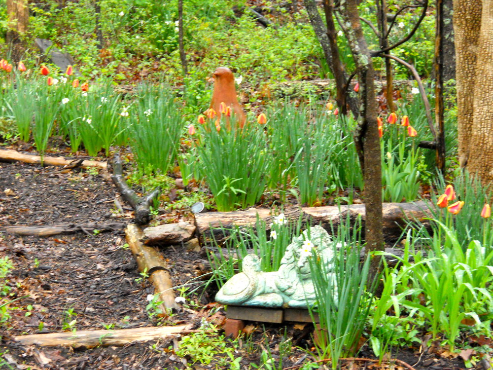 My clay pidgeon gets company with orange tulips. (Photo by Charlotte Ekker Wiggins)