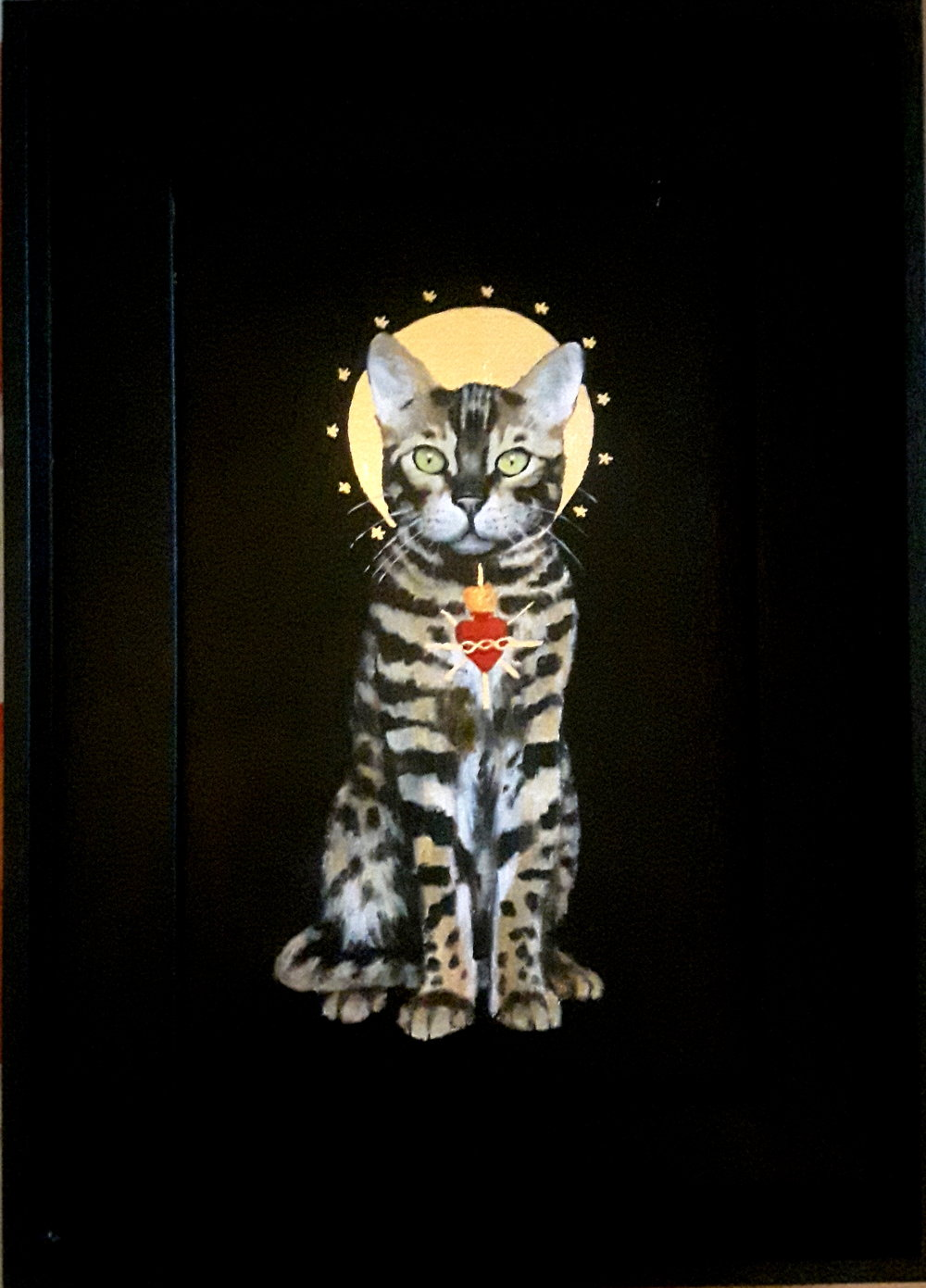 Sacred Cat - Bengal