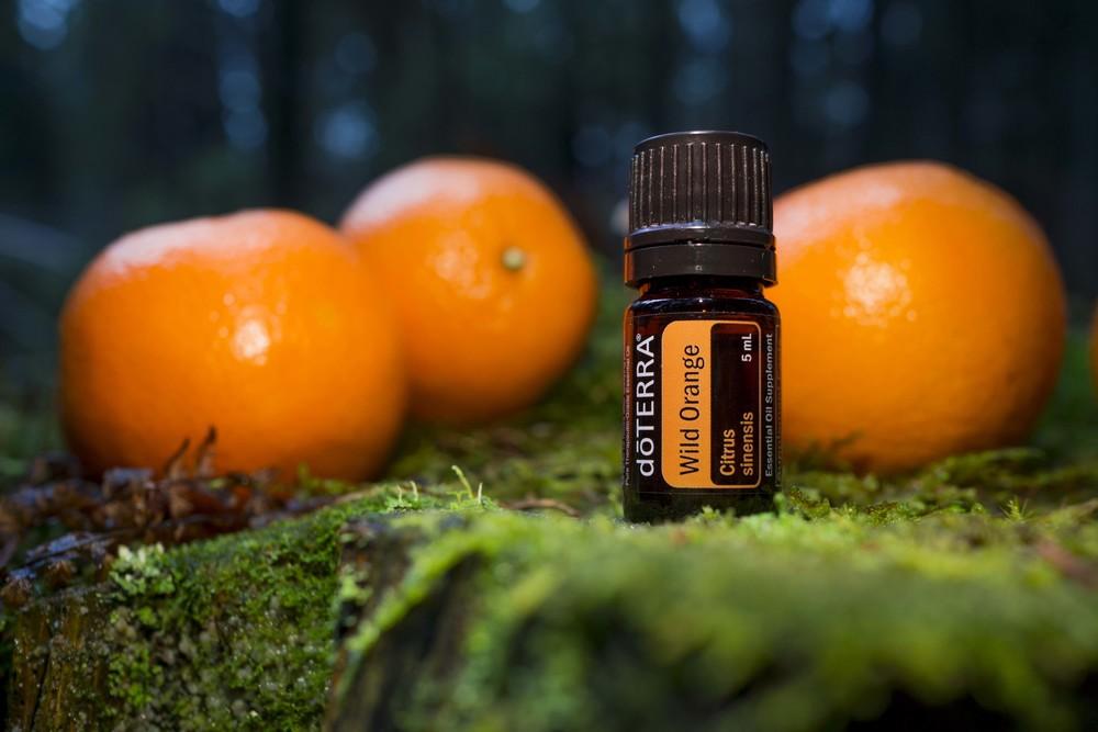 Wild Orange Essential Oil Essential Experience Dōterra