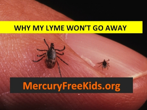 MFK Why My Lyme Won't Go Away.jpg