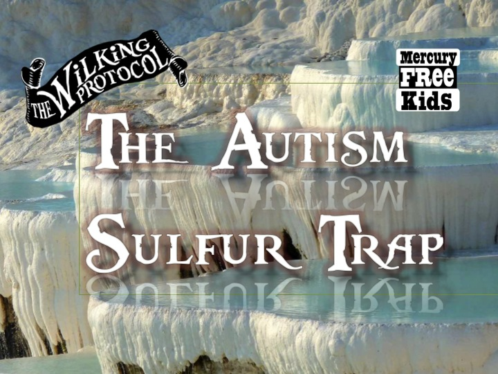 AutismSulfurTrap.jpg