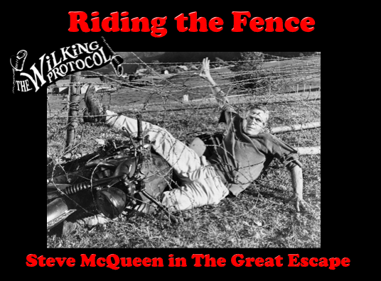 TWP-RidingTheFence 171115.png