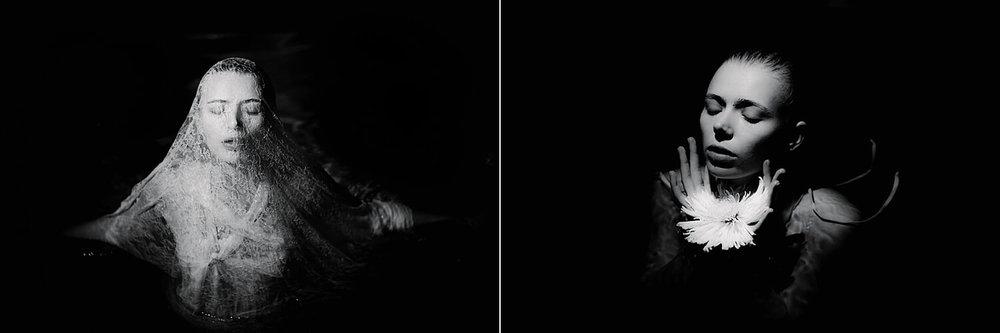 Cosmos Lelia Scarfiotti.jpg