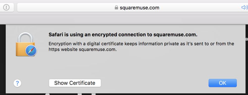 Safari-SSL-certificate-Squaremuse-Squarespace-templates.png