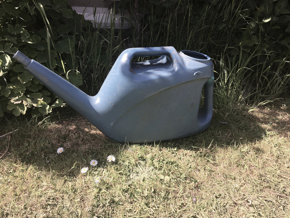 DRESS label Crisis Collection 2017 Look book Blue Plastic Watering Can in my Mum & Dad's Garden Dress-Ltd