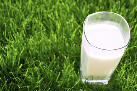 milkongrass.jpg