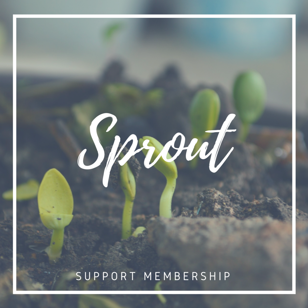 01 - Comprehensive Support Membership (great for beginners!)