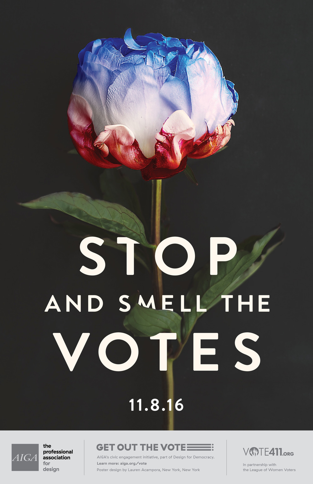 Lauren Acampora Get Out the Vote Poster