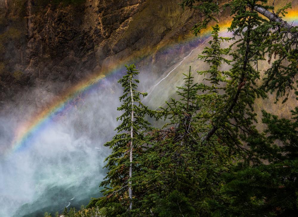 Yellowstone l FOR WEB l -20.jpg