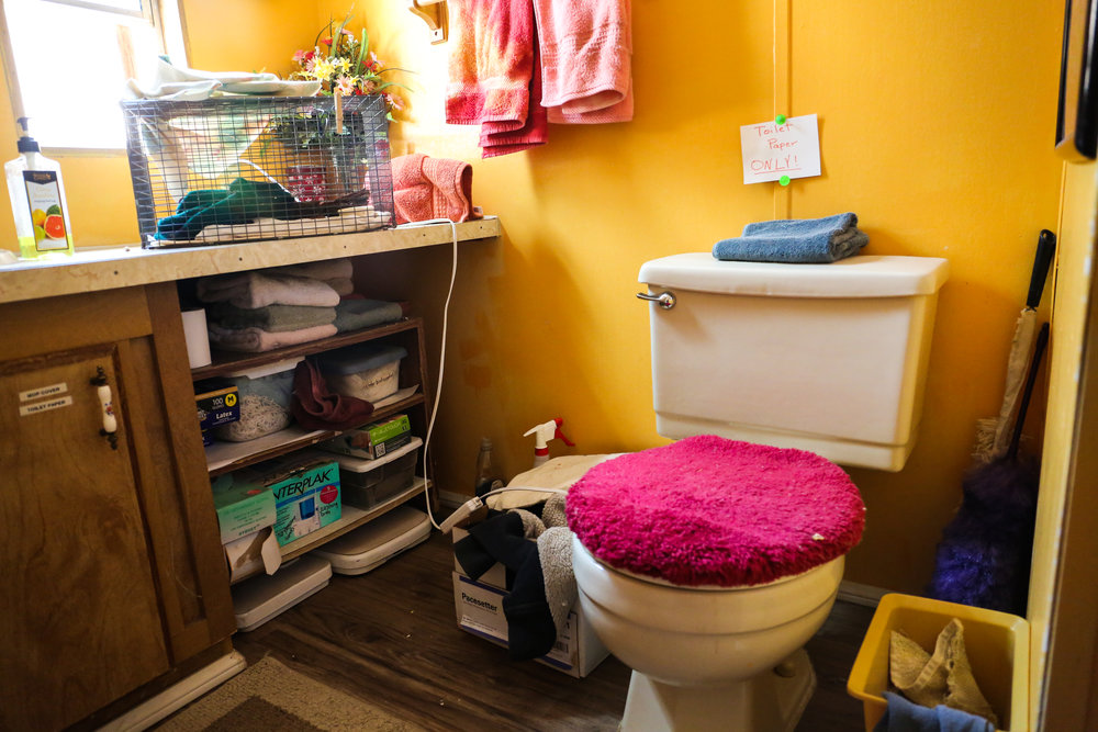 toiletcage.jpg