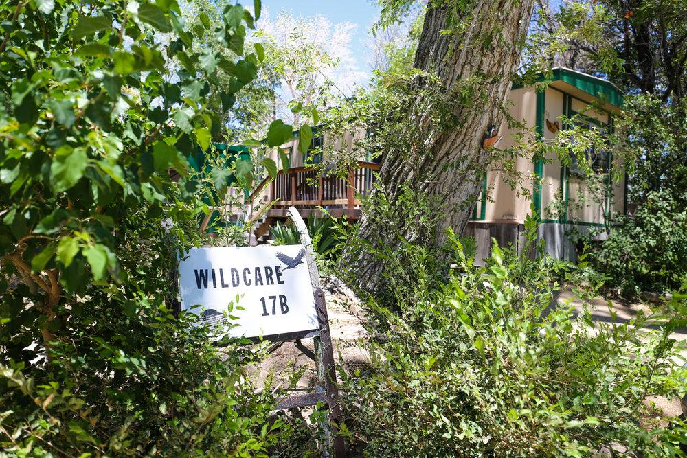 wildlifecenter.jpg