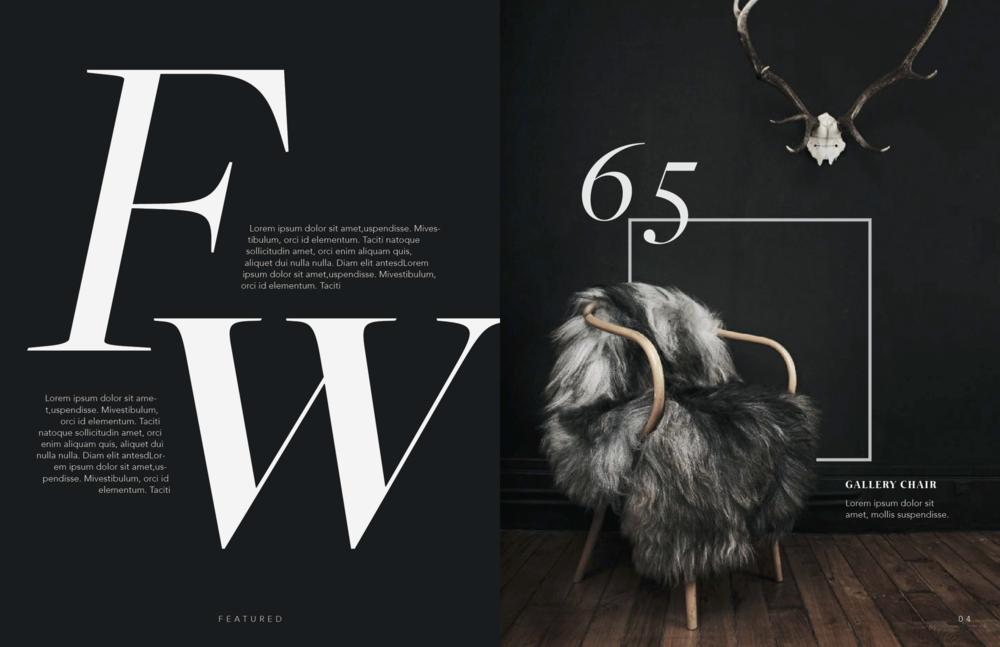 Magazine 3 copy.png