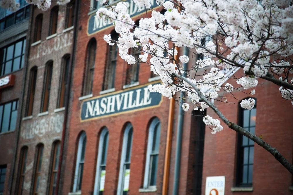 Maggie Nashville 4.jpg