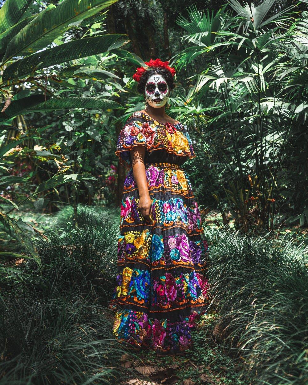 Dia de Muertos - Origin: MexicoToday: Chicago, San Diego