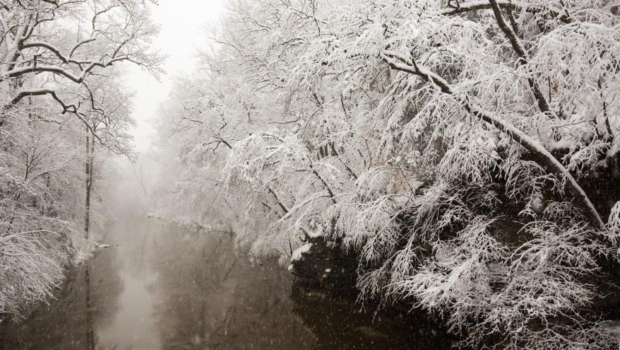 Uniatowski-FOW-Winter2015-008-878x495.jpg