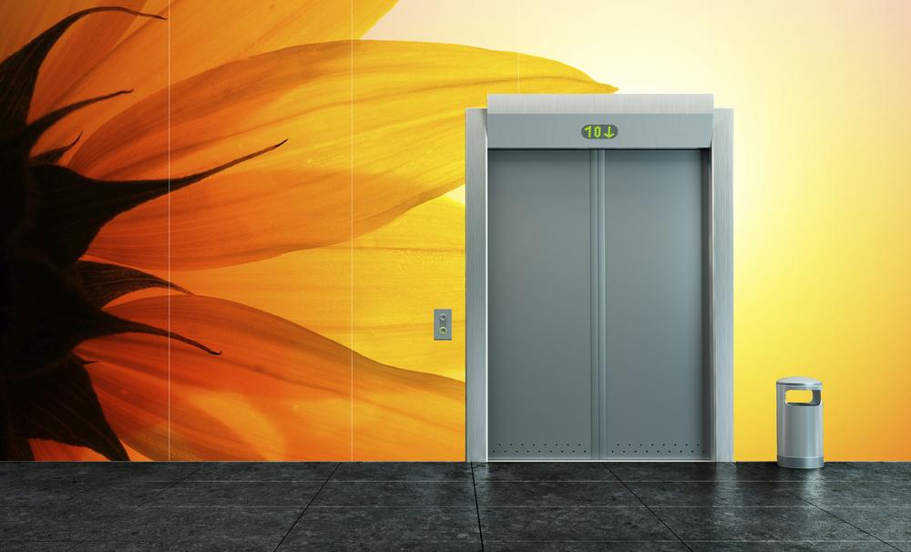 ABD Elevator wall.jpeg