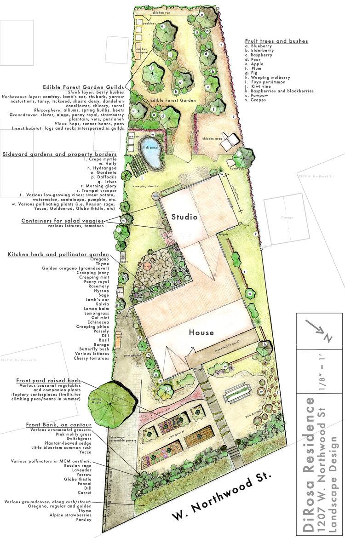 permaculture design u2014 samantha dirosa