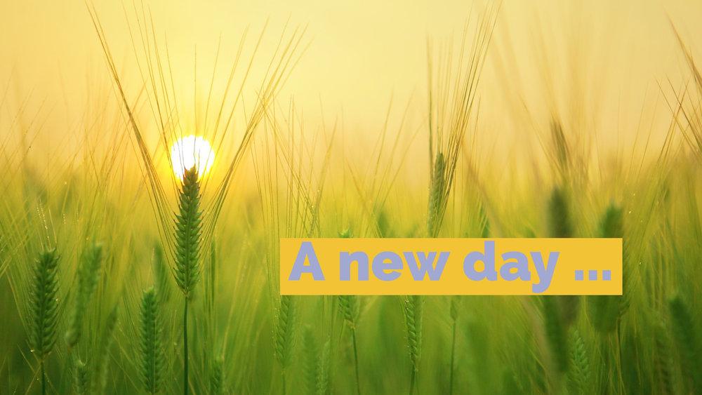 A new day.jpg
