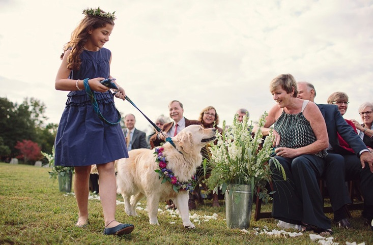 pet-in-wedding11.jpg