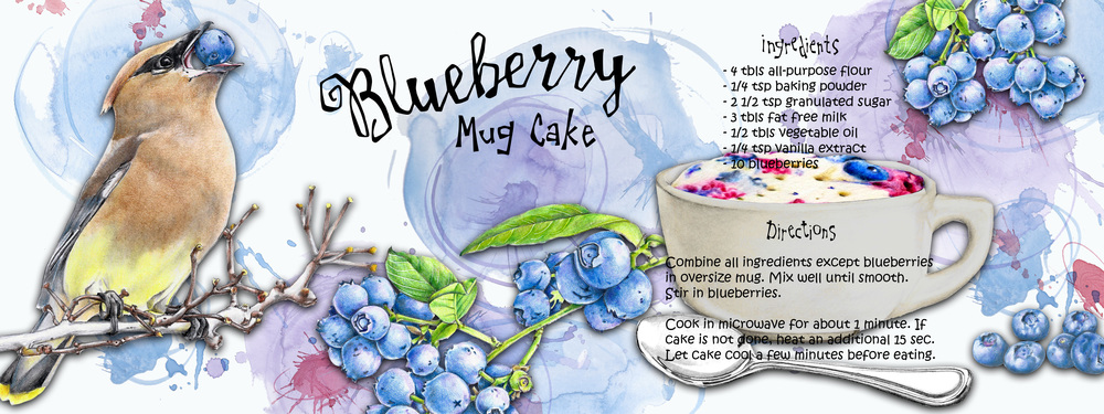 Bluberry recipe BIG.jpg