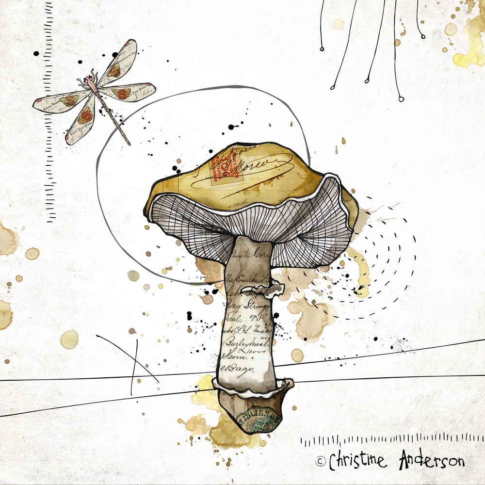 pb gold mushroom 8x8.jpg