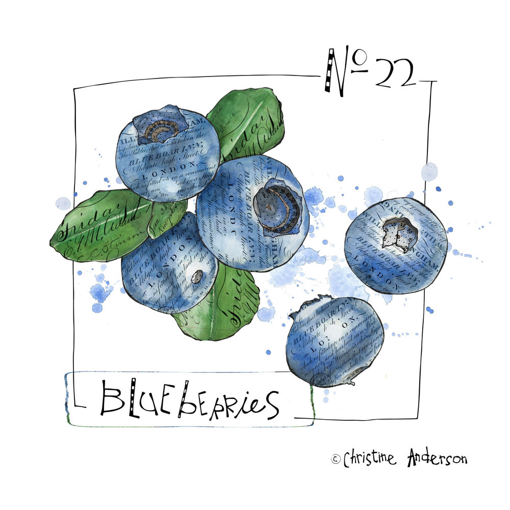 blueberries-day22.jpg