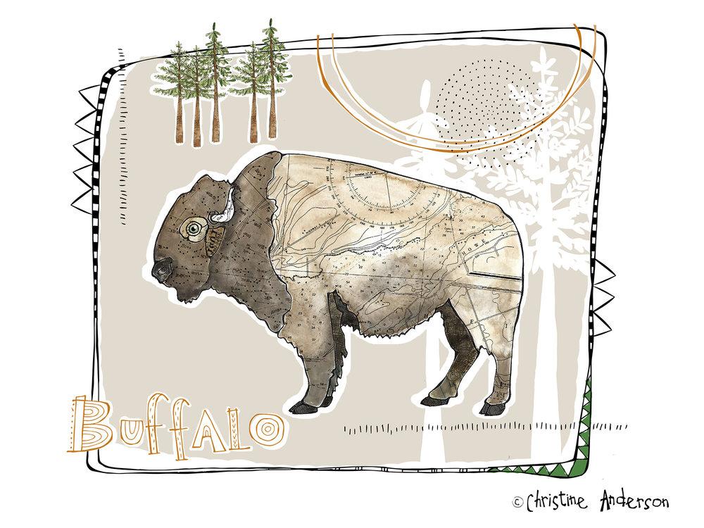 Mountain Yurk Boy Buffalo.jpg
