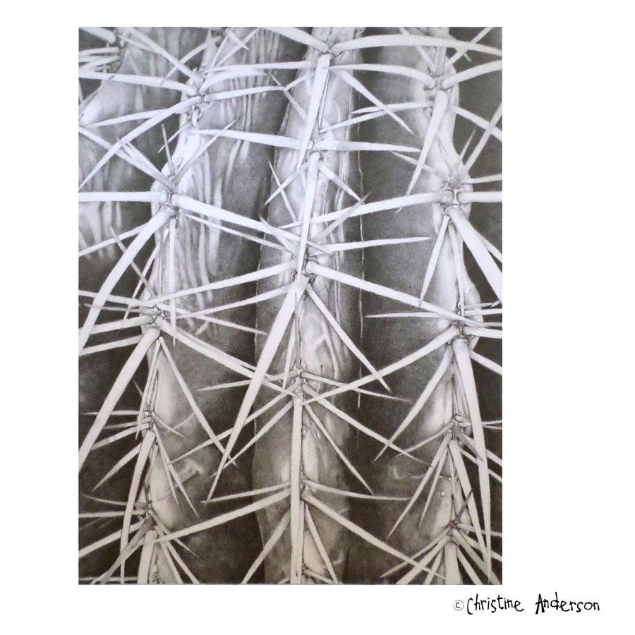 Graphite-cactus-Insta.jpg