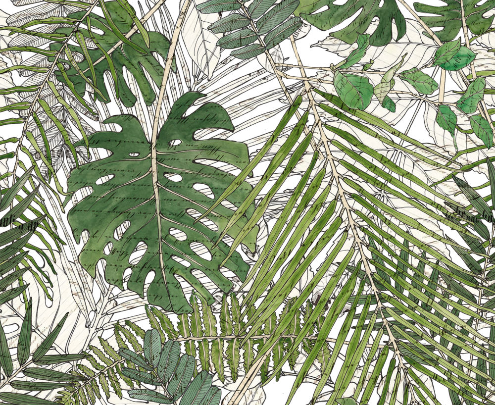Leaves BIG  bw color pattern.png