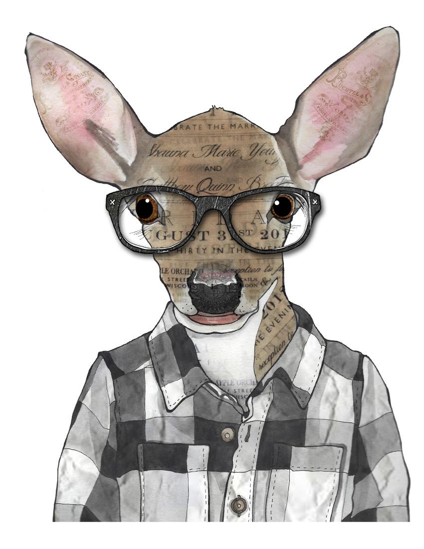 CA Deer texture.jpg