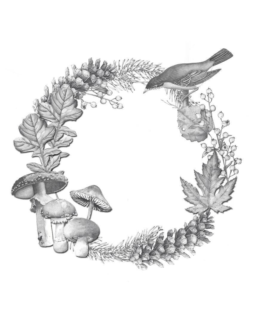 CA Fall18 mushroom and black bird circle frame.jpg