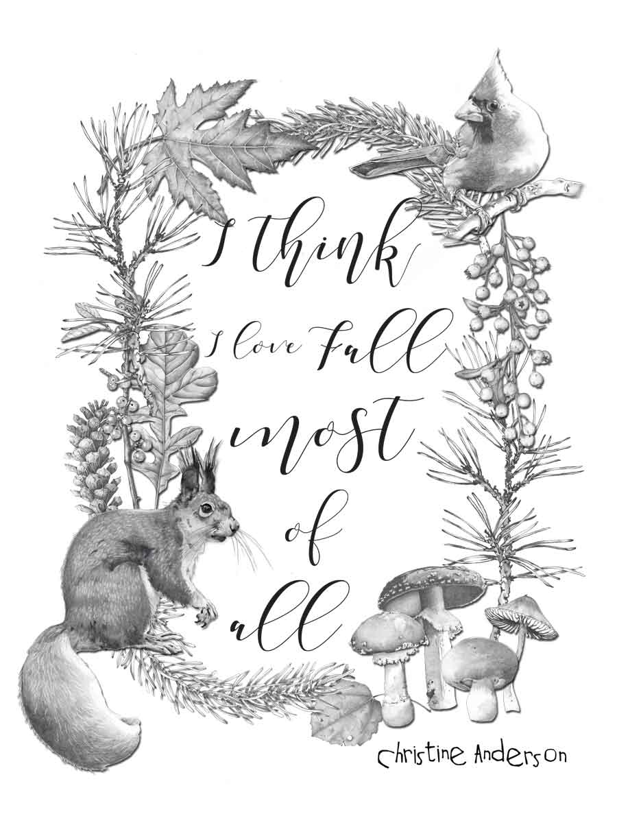 Fall18-squirrel-and-cardinal-frame-WORDS-INSTA.jpg