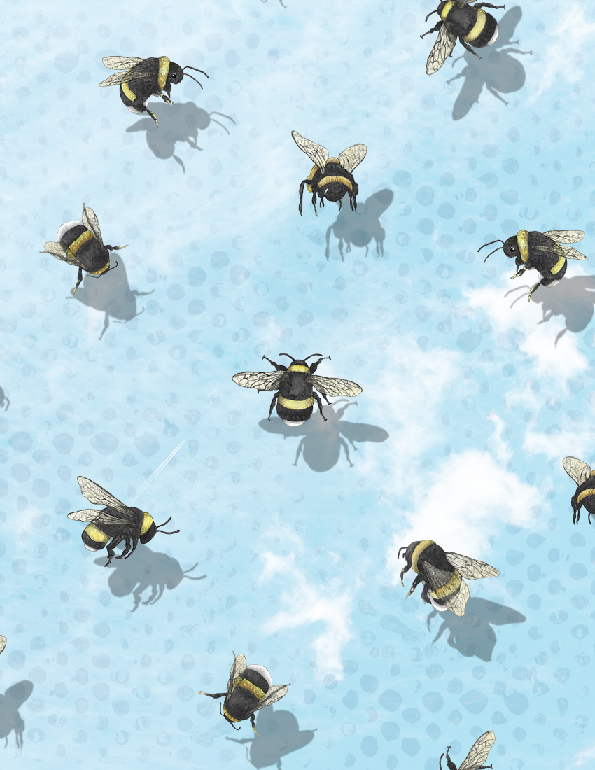CA Bee pattern with clouds with dots.jpg