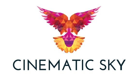 Cinematic Sky NI Drone Specialists