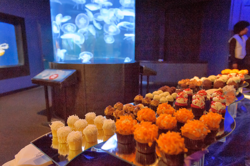 06. Dessert Bar with Jellies.jpg