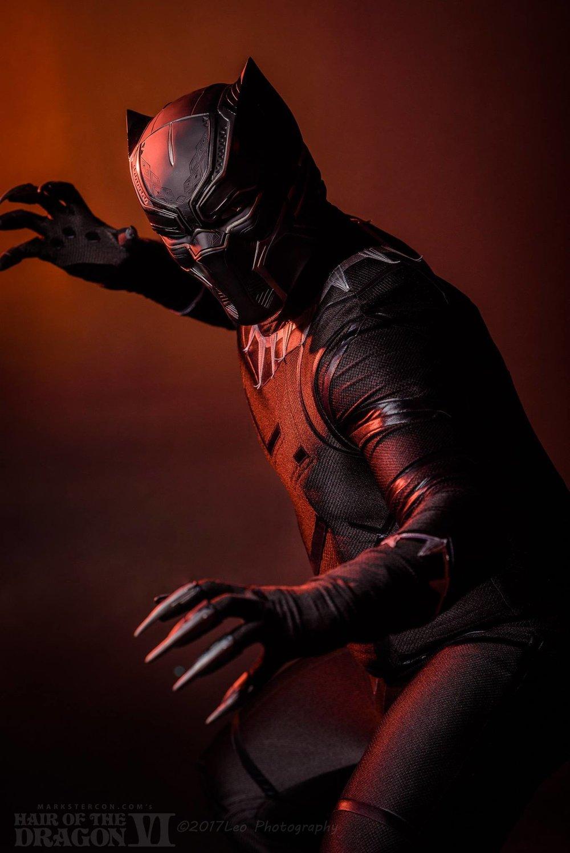 Black Panther David Leo2.jpg