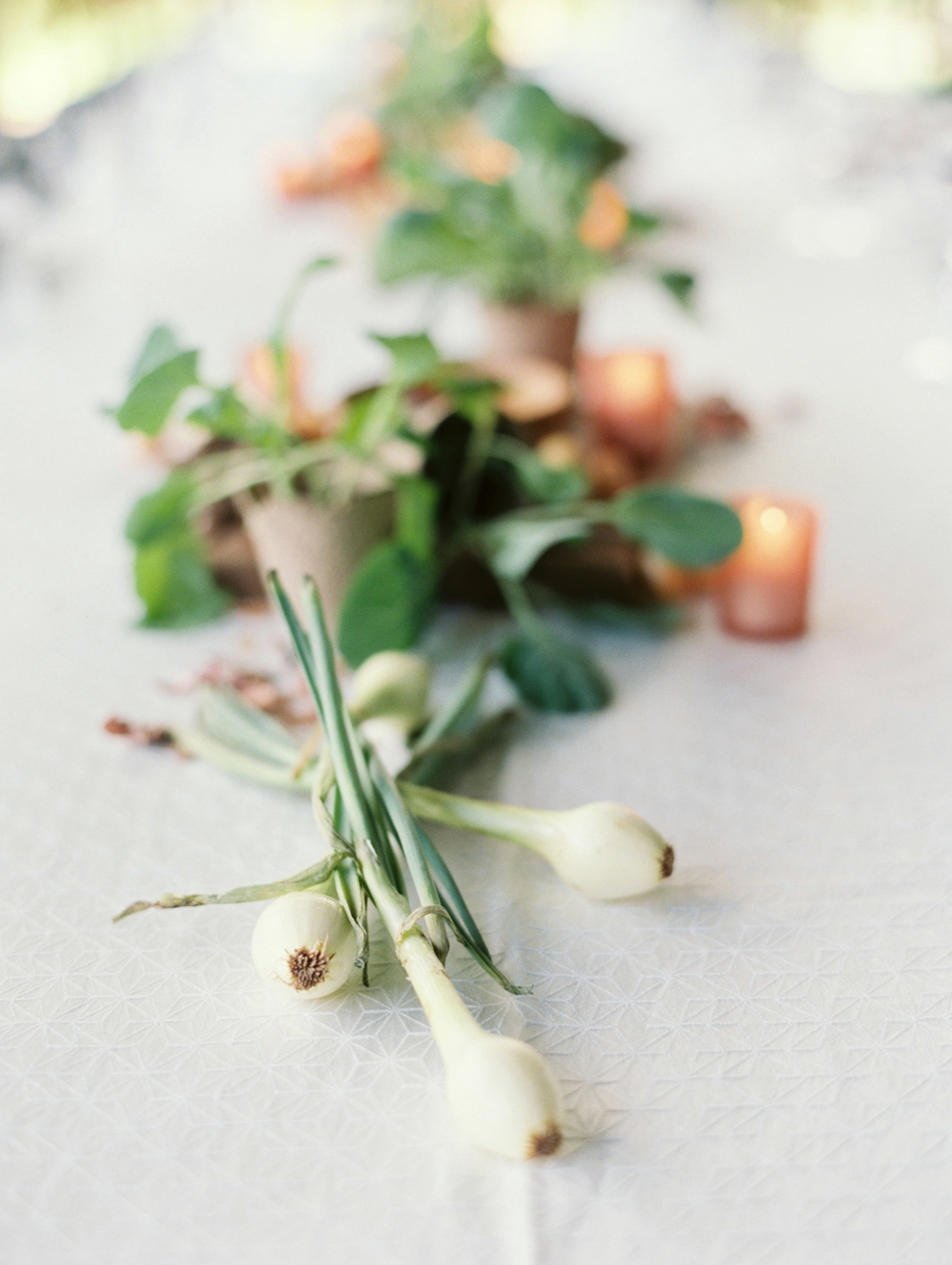 I just loved the spring onions that stretched along the center of the table and created a linear contrast against the soft, patterned white linen.  Centerpiece styling by Marianne Caldwell of Riveroaks.  Photo by Holly Carlisle.