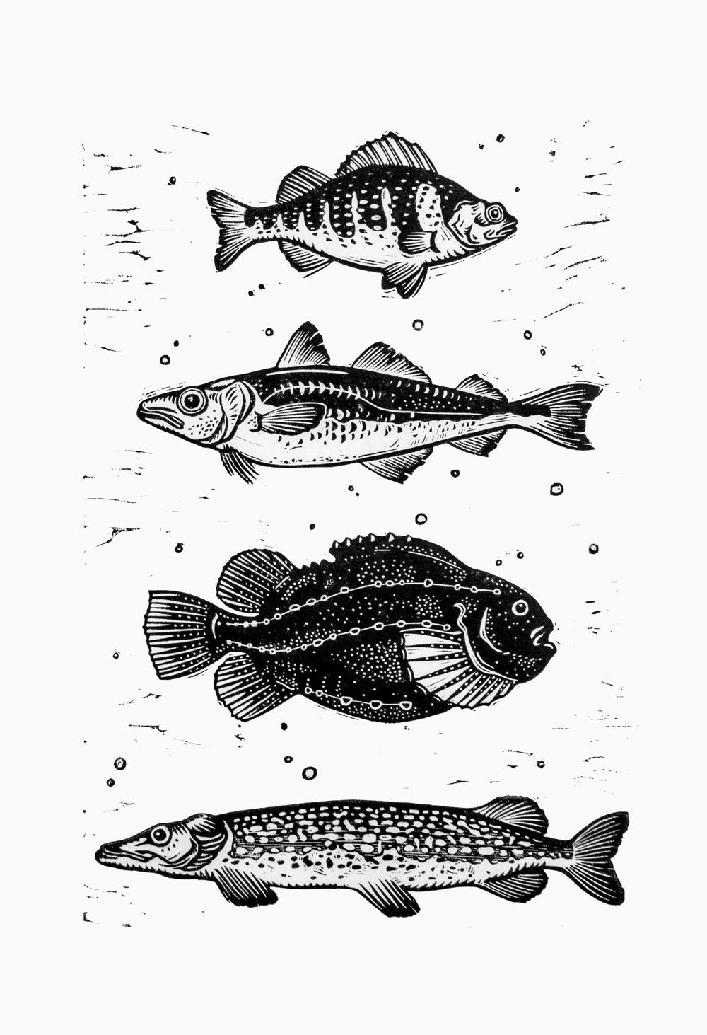 reeled-in-fish-linocut-print-final-narrow-border.jpg