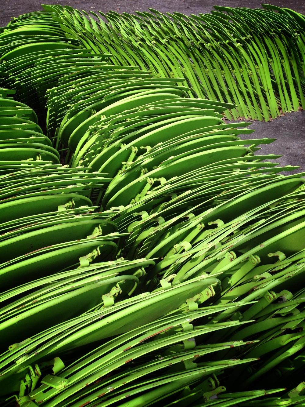 Green_Procession.JPG