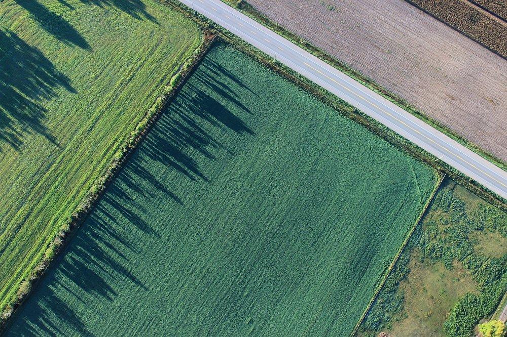 Agriculture-Farm-Cropland-Farmland-Field-1867212.jpg