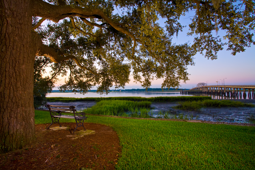 Make the Lowcountry your home