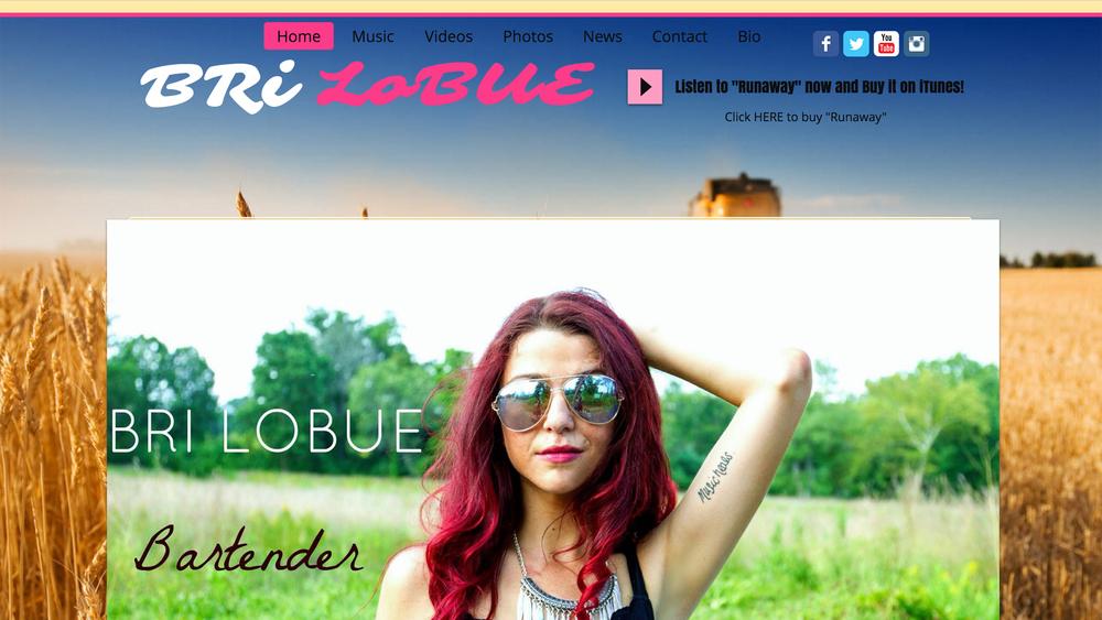 www.brilobue.com