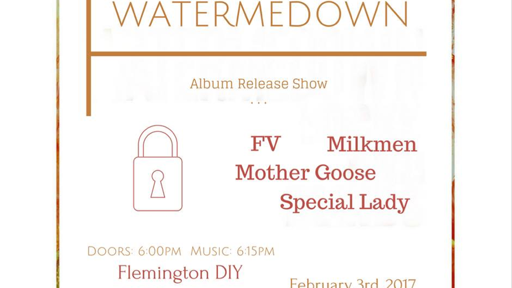 FLEMINGTON DIY SHOW (Feb. 3, 2017)   Emo, Indie, Rock, Punk    Flemington, NJ   Posted Wednesday, February 1, 2017