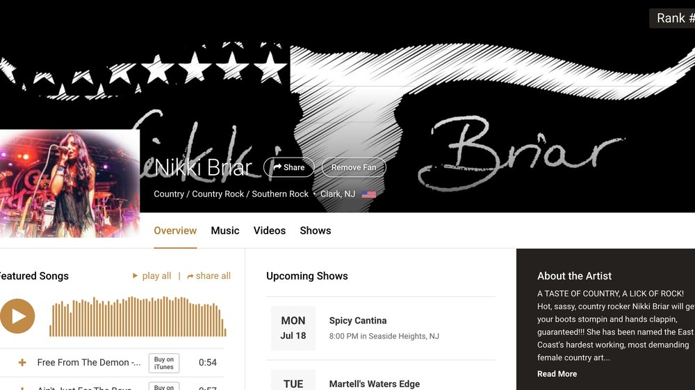 reverbnation.com/nikkibriar
