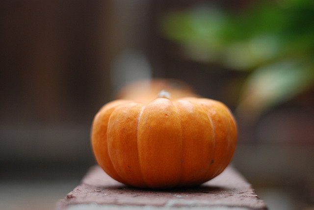 This is a pumpkin!