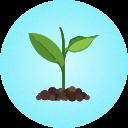 circle-plant (1).png